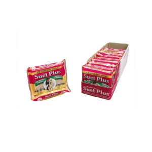 Suet Cake Cranberry Snap 12 pack