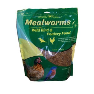 Dried Mealworms for Birds and Chickens in 21 oz bag