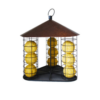 Suet Ball Feeder Fly-Through