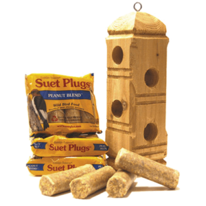 Suet Plugs and Feeder