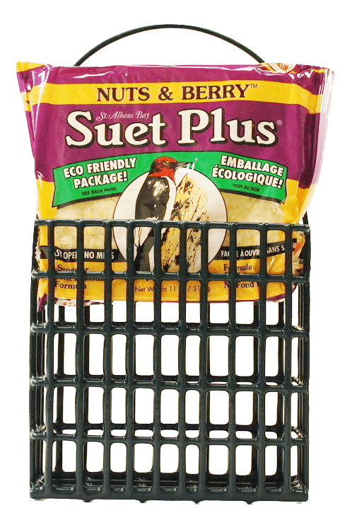 Nuts and Berry Suet Cake and Suet Feeder